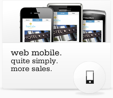 Mobile Web. Quite simply more sales.